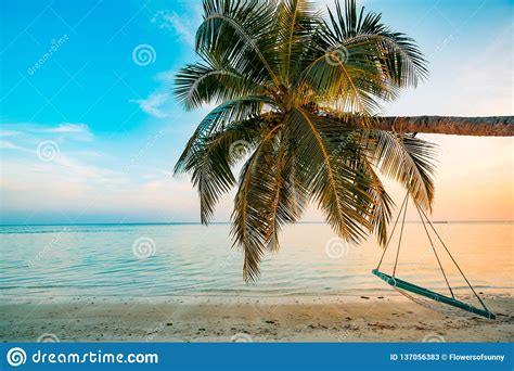 Vacation Background Images by Wonderful Summer Vacation Background With Swing On