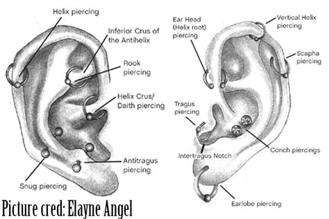 Lobe Ear Piercing Diagram by Piercing Alphaassassintattoo