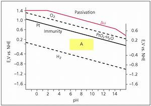 Role Of Platinum In Photoelectrochemical Studies Related