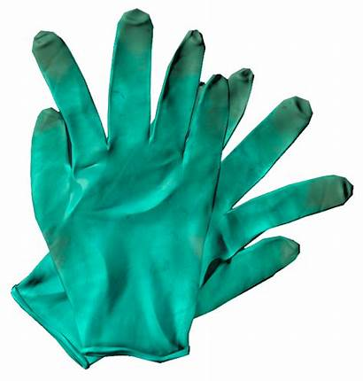 Gloves Surgical Dayz Gamepedia