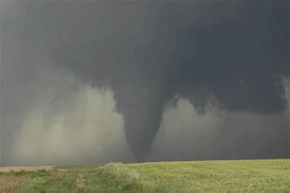 Tornado Moving Wallpapersafari Tailgating Cincinnati Chasers Bengal