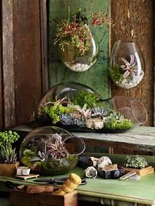 Terrarium Plante Deco : diy terrarium un jardin d int rieur 100 d co maginea ~ Dode.kayakingforconservation.com Idées de Décoration