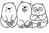 Bears Bare Coloring Drawing Bear Sheets Cartonionline Doodle Drawings Kawaii Dei Template Draw Toy Panda Ice Cartoon Osos Network Kaynak sketch template