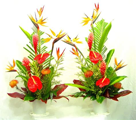 floral arrangements tropical arrangements a special touch florists serving lahaina and west maui with quality
