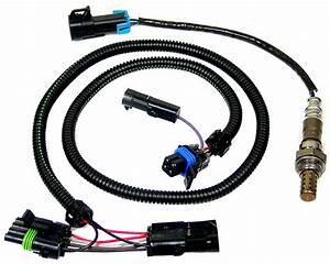 1985 Buick Regal Power Window Wiring Collection
