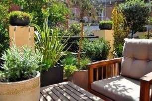 sichtschutz balkon pflanzen balkon sichtschutz mit pflanzen natur pur auf dem balkon