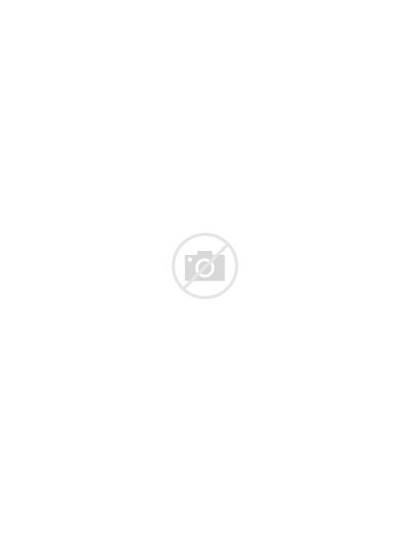 Common Pets Drawn Cartoon Five