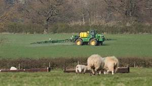 Income from farming revised up 6% for 2015 - Farmers Weekly
