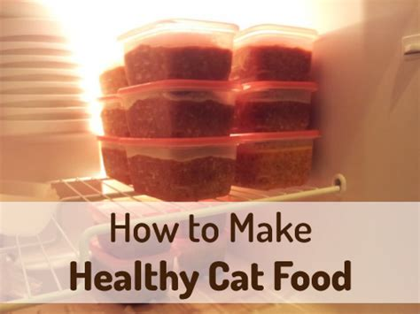 homemade cat food pure living  life