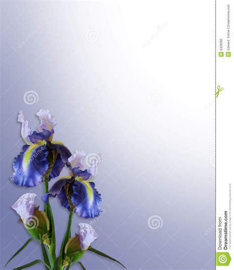 iris corner floral border wedding stock illustration