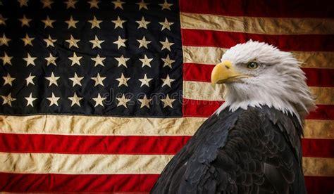 2,373 Patriotic Eagle Photos - Free & Royalty-Free Stock ...