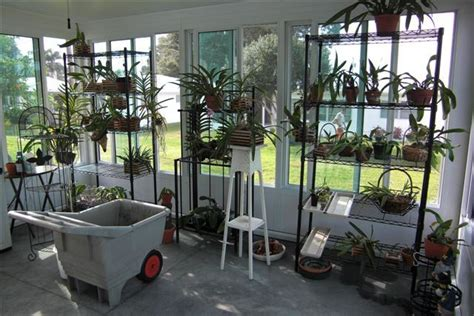plants for sunroom sunroom with lots of plants for the home pinterest