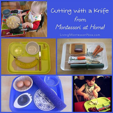 cutting with a knife from montessori at home suliamoms 526 | 72dc2d2f7602c7b2eaa1befa059a9fdc maria montessori montessori toddler