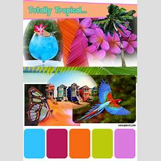 Tropical Color Palette  Google Search  Tropical Pool In