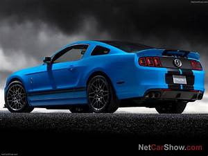 Mustang Shelby Gt 500 Prix : shelby mustangs 20 pictures of new shelby mustang gt500 2013 ~ Medecine-chirurgie-esthetiques.com Avis de Voitures
