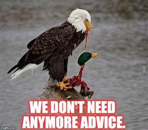 We've had enough of actual advice mallard. - Imgflip