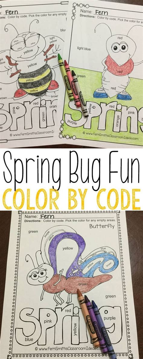color  code spring bug fun   colors