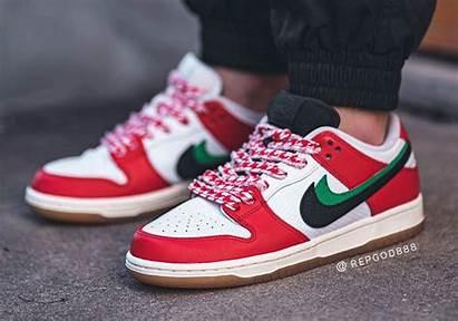 Sb Dunk Nike Low Habibi Skate Frame