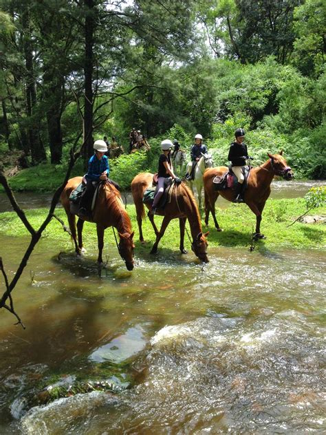 riding horse camps fun holiday email events ever horses