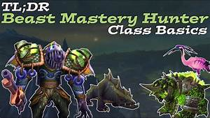 Beast Mastery Hunter Guide 7 3