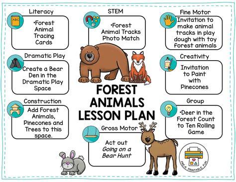 forest animals 386 | forest preschool lesson plan orig
