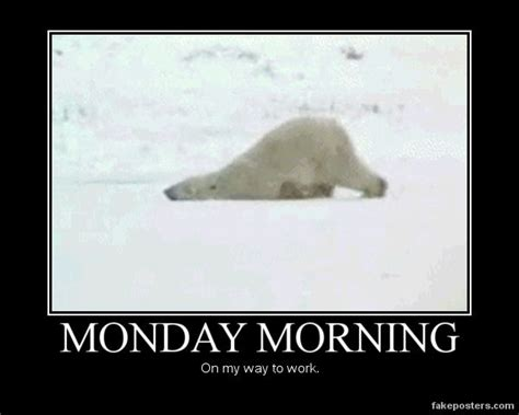 Funny Monday Morning Memes - dragging to work monday s funny memes feelings laugh jokes meme tired polar bear hungover