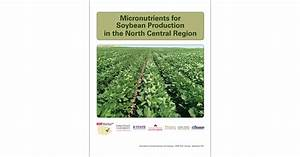 Micronutrients For Soybean Production In The North Central