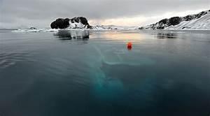 QuotMar Sem Fimquot Yacht Antarctica Off The Coast