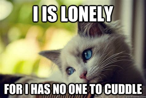 Loneliness Memes - i is lonely for i has no one to cuddle first world problems cat quickmeme