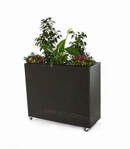 Blumenkübel Mit Sichtschutz : mobiler sichtschutz durch pflanztrog mit rankgitter eleganteinrichten magazin ~ Sanjose-hotels-ca.com Haus und Dekorationen