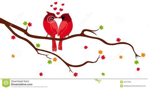love birds  tree branch royalty  stock photo image