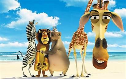 Cartoons Characters Popular Funny Movies Madagascar Cartoon