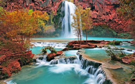 havasu falls waterfall  grand canyon arizona united
