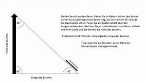 Rechter Winkel Mit Meterstab : wie f lle ich einen baum und andere n tzliche tipps ~ Watch28wear.com Haus und Dekorationen