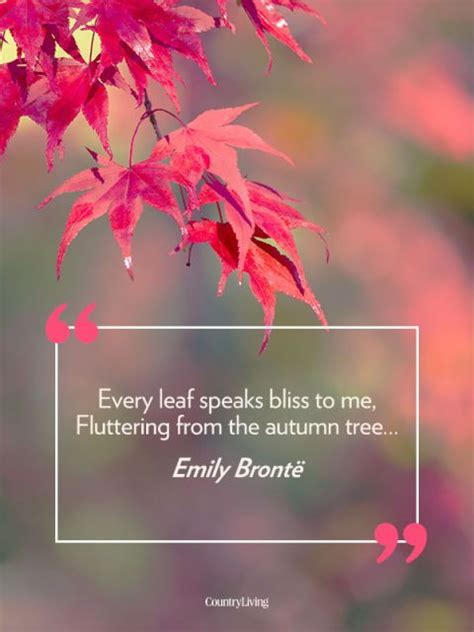 fall quotes  remind    amazing autumn
