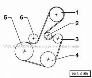 Colocaci U00f3n O Diagrama De La Correa Poly V