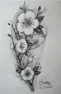 Drawn cherry blossom realistic - Pencil and in color drawn ...