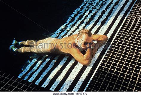 bruce willis color of color 1994 bruce willis stock photos color