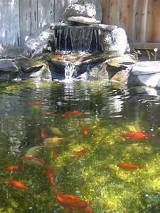 Tiere Im Gartenteich : gartenteich ideen tiere pflanzen wasserfall koiteich teich teich wasserfall garten und garten ~ Eleganceandgraceweddings.com Haus und Dekorationen