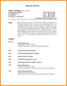 sle basic resume format 5 auto appraiser resume sle scholarship letter