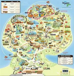 The Singapore Zoo   Muse@Singapore