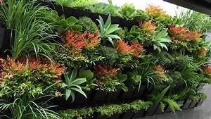Top 10 best plants for your indoor vertical garden for Garden plant design