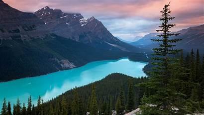 4k Mountains Canada Lake Peyto Wallpapers Nature