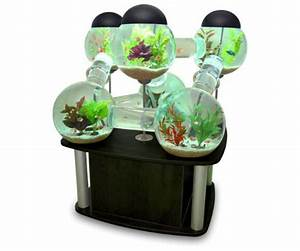 Creative Labyrinth Aquarium  Avec Images