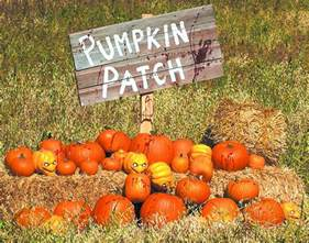 Pumpkin Picking Nj 2017 by Orlando Pumpkin Patches 2017 Mycentralfloridafamily Com