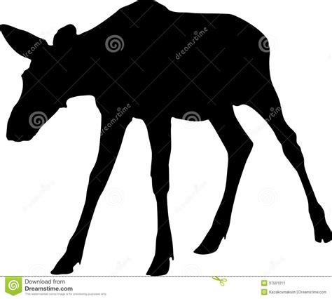 Silhouette Of Moose Calf Stock Image Image Of Calf