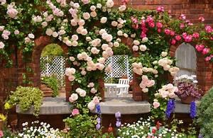 Garden Background Download Free Cool High Resolution