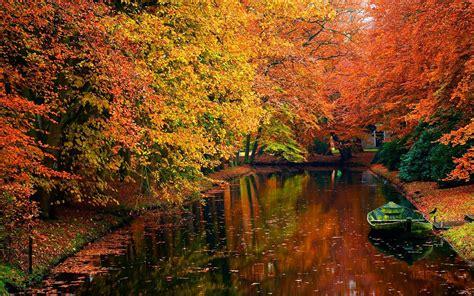 autumn scene background wallpaper  desktop