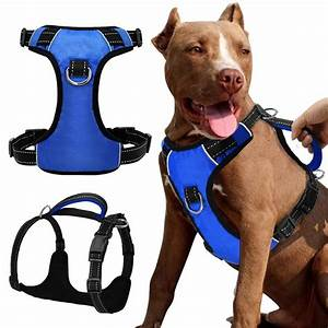 Quick Control Reflective No Pull Training Dog Harness ...