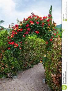 Rosen Für Rosenbogen : rosen bogen im englischen land garten stockbild bild 28812129 ~ Orissabook.com Haus und Dekorationen